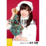 SKE48 2014年12月度個別生写真「クリスマス」5枚セット 岩永亞美