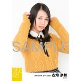SKE48 2015年1月度個別生写真「アイビーストライプ」5枚セット 古畑奈和