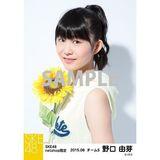 SKE48 2015年8月度net shop限定個別生写真 5枚セット 野口由芽
