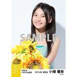SKE48 2015年8月度net shop限定個別生写真 5枚セット 小畑優奈