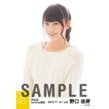 SKE48 2015年11月度net shop限定個別生写真 5枚セット 野口由芽