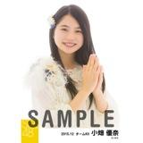 SKE48 2015年12月度選抜生写真「コップの中の木漏れ日」 小畑優奈