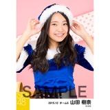 SKE48 2015年12月度個別生写真「クリスマス」5枚セット 山田樹奈