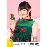 SKE48 2015年12月度net shop限定個別生写真 5枚セット 野口由芽