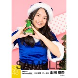SKE48 2015年12月度net shop限定個別生写真 5枚セット 山田樹奈