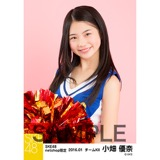SKE48 2016年1月度net shop限定個別生写真「チアガール」 5枚セット 小畑優奈
