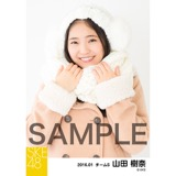 SKE48 2016年1月度個別生写真「冬服」5枚セット 山田樹奈