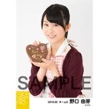 SKE48 2016年2月度個別生写真「バレンタイン」5枚セット 野口由芽