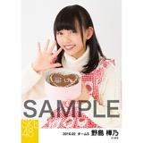 SKE48 2016年2月度個別生写真「バレンタイン」5枚セット 野島樺乃
