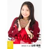 SKE48 2016年2月度個別生写真「バレンタイン」5枚セット 山田樹奈