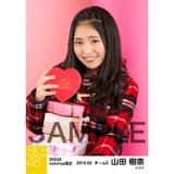 SKE48 2016年2月度 net shop限定個別生写真「バレンタインII」5枚セット 山田樹奈