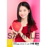SKE48 2016年2月度 net shop限定個別生写真「バレンタインII」5枚セット 小畑優奈