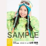 SKE48 2016年2月度 net shop限定個別生写真「スノボ ウェア」5枚セット 山田樹奈