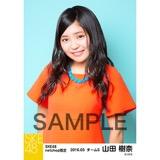 SKE48 2016年3月度 net shop限定個別生写真「レトロガーリー」5枚セット 山田樹奈