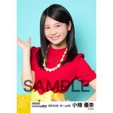 SKE48 2016年3月度 net shop限定個別生写真「レトロガーリー」5枚セット 小畑優奈