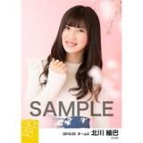SKE48 2016年3月度 個別生写真「お花見」5枚セット 北川綾巴