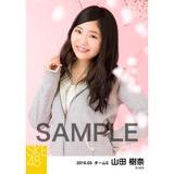 SKE48 2016年3月度 個別生写真「お花見」5枚セット 山田樹奈
