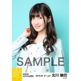 SKE48 2016年3月度 net shop限定個別生写真「春旅行」5枚セット 北川綾巴