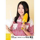 SKE48 2016年4月度 net shop限定個別生写真「お花屋さん」5枚セット 杉山愛佳