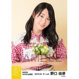 SKE48 2016年4月度 net shop限定個別生写真「お花屋さん」5枚セット 野口由芽