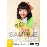 SKE48 2016年4月度 net shop限定個別生写真「お花屋さん」5枚セット 野島樺乃