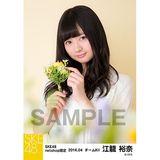 SKE48 2016年4月度 net shop限定個別生写真「お花屋さん」5枚セット 江籠裕奈