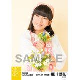SKE48 2016年4月度 net shop限定個別生写真「お花屋さん」5枚セット 相川暖花