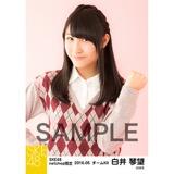 SKE48 2016年5月度 net shop限定個別生写真「アーガイル ニット」5枚セット 白井琴望