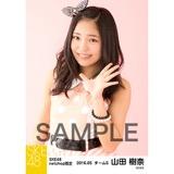 SKE48 2016年5月度 net shop限定個別生写真「ピンクフリル」5枚セット 山田樹奈