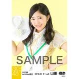 SKE48 2016年6月度 net shop限定個別生写真「奇跡は間に合わない」衣装5枚セット 山田樹奈