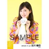 SKE48 2016年6月度 個別生写真「レインウェア」5枚セット 北川綾巴