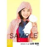 SKE48 2016年6月度 個別生写真「レインウェア」5枚セット 山田樹奈