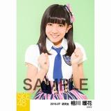 SKE48 2016年7月度 個別生写真「ドームストライプ」5枚セット 相川暖花