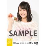 SKE48 2016年8月度 net shop限定個別生写真「サマーバケーション」5枚セット 野口由芽