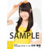 SKE48 2016年8月度 net shop限定個別生写真「サマーバケーション」5枚セット 白井琴望