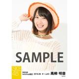 SKE48 2016年8月度 net shop限定個別生写真「サマーバケーション」5枚セット 高柳明音