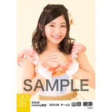 SKE48 2016年9月度 net shop限定個別生写真「パレオはエメラルド」衣装5枚セット 山田樹奈