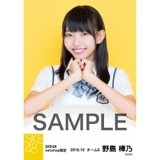 SKE48 8周年記念 net shop限定個別ランダム生写真5枚セット 野島樺乃