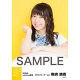 SKE48 8周年記念 net shop限定個別ランダム生写真5枚セット 熊崎晴香