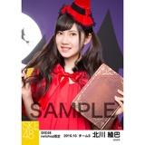 SKE48 2016年10月度 net shop限定個別生写真「ハロウィン」5枚セット 北川綾巴