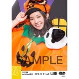 SKE48 2016年10月度 net shop限定個別生写真「ハロウィン」5枚セット 山田樹奈