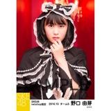 SKE48 2016年10月度 net shop限定個別生写真「ハロウィンII」5枚セット 野口由芽
