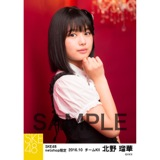 SKE48 2016年10月度 net shop限定個別生写真「ハロウィンII」5枚セット 北野瑠華