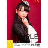 SKE48 2016年10月度 net shop限定個別生写真「ハロウィンII」5枚セット 上村亜柚香