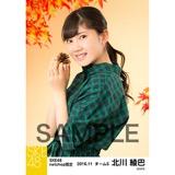 SKE48 2016年11月度 net shop限定個別生写真「秋の行楽」5枚セット 北川綾巴