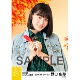 SKE48 2016年11月度 net shop限定個別生写真「秋の行楽」5枚セット 野口由芽
