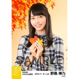 SKE48 2016年11月度 net shop限定個別生写真「秋の行楽」5枚セット 野島樺乃