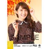 SKE48 2016年11月度 net shop限定個別生写真「秋の行楽」5枚セット 内山命