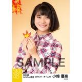 SKE48 2016年11月度 net shop限定個別生写真「秋の行楽」5枚セット 小畑優奈