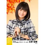 SKE48 2016年11月度 net shop限定個別生写真「秋の行楽」5枚セット 北野瑠華
